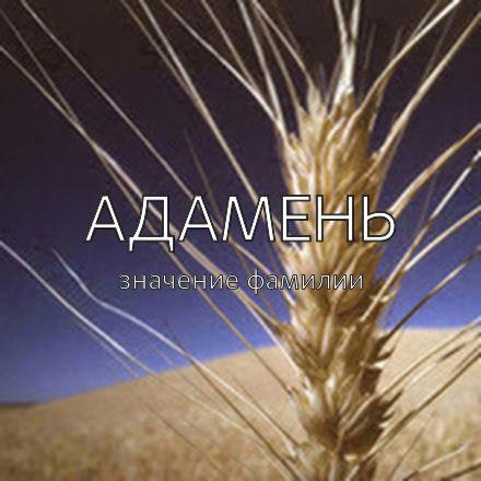 Происхождение фамилии Адамень