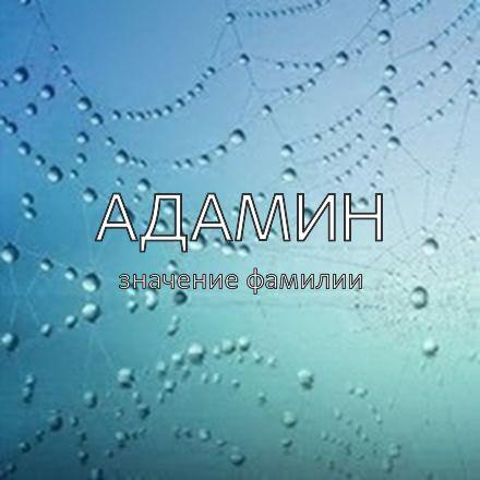 Происхождение фамилии Адамин
