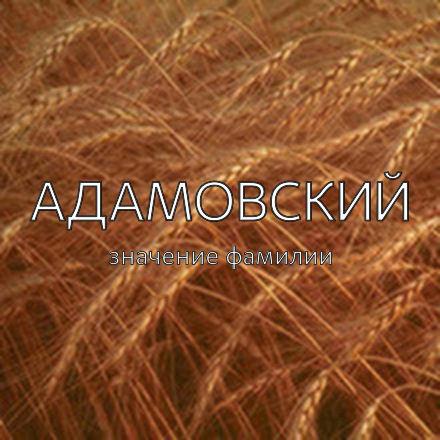 Происхождение фамилии Адамовский