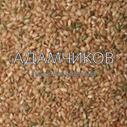 Происхождение фамилии Адамчиков