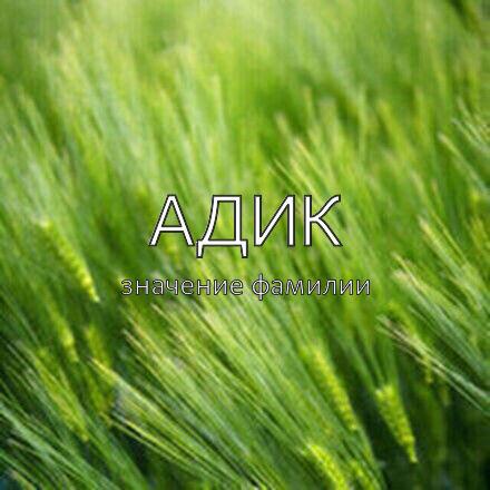 Происхождение фамилии Адик
