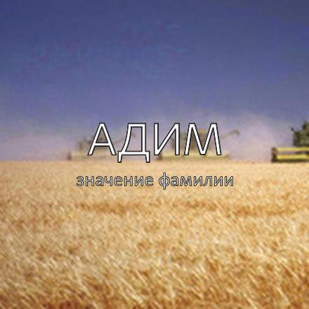 Происхождение фамилии Адим