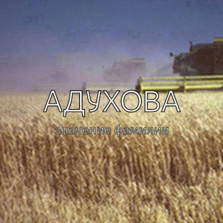 Происхождение фамилии Адухова