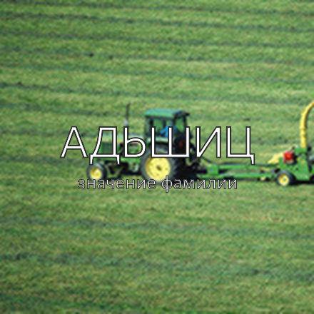Происхождение фамилии Адьшиц