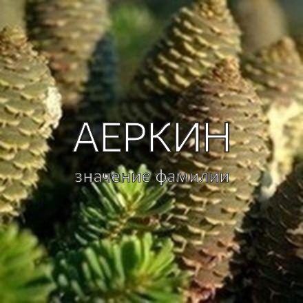 Происхождение фамилии Аеркин