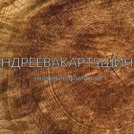 Происхождение фамилии Андреевакартушина