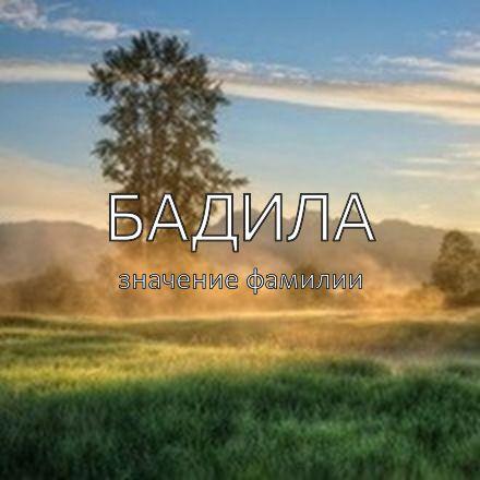 Происхождение фамилии Бадила