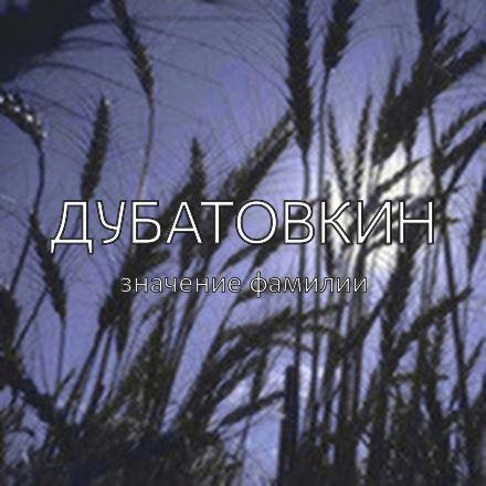 Происхождение фамилии Дубатовкин