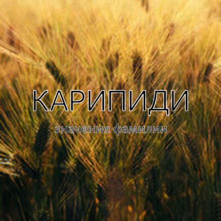 Происхождение фамилии Карипиди