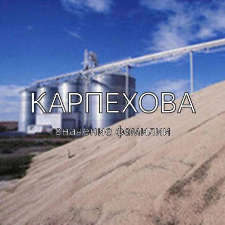 Происхождение фамилии Карпехова