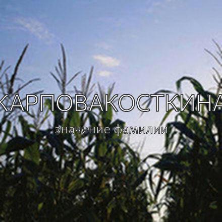 Происхождение фамилии Карповакосткина