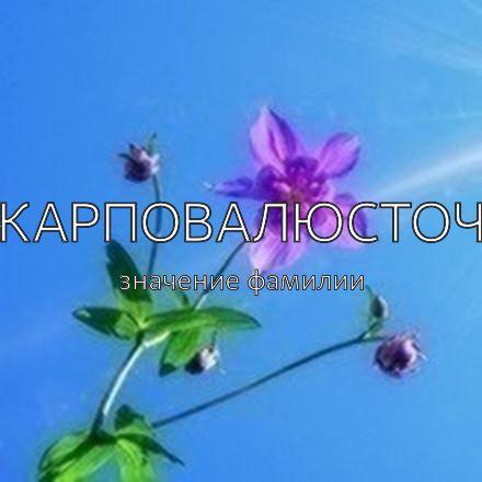 Происхождение фамилии Карповалюсточ