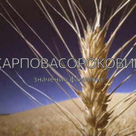 Происхождение фамилии Карповасороковик