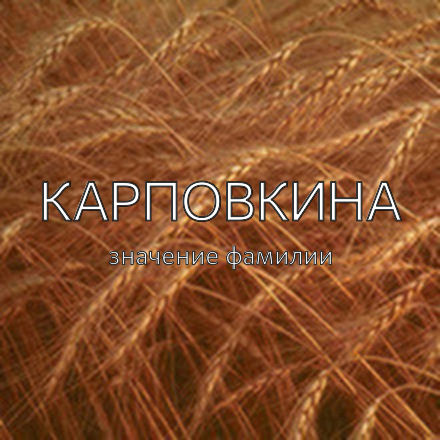 Происхождение фамилии Карповкина