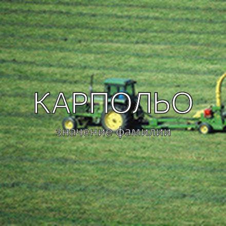 Происхождение фамилии Карпольо