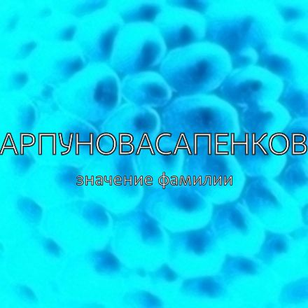 Происхождение фамилии Карпуновасапенкова