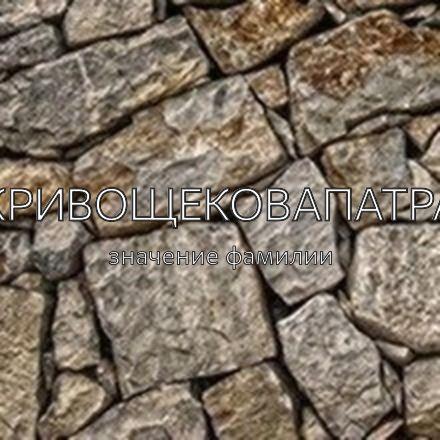 Происхождение фамилии Кривощековапатра