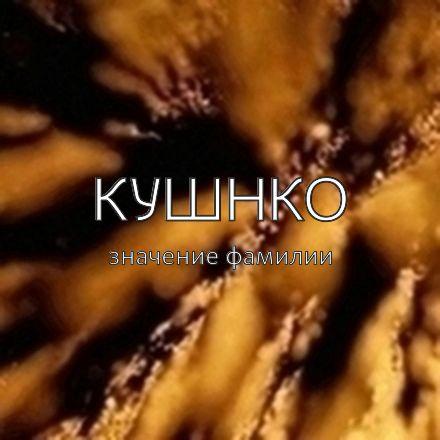 Происхождение фамилии Кушнко