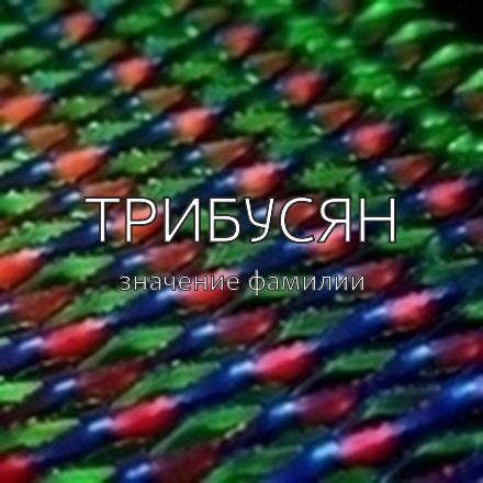 Происхождение фамилии Трибусян
