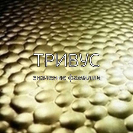 Происхождение фамилии Тривус