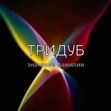 Происхождение фамилии Тридуб