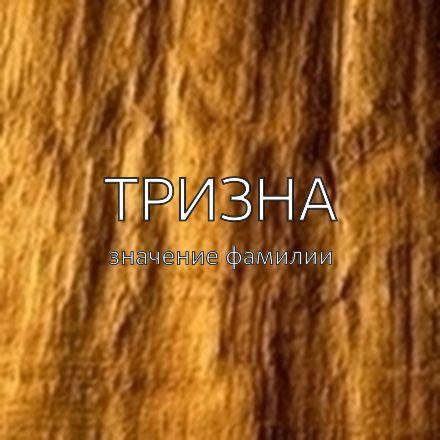 Происхождение фамилии Тризна