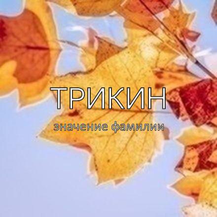 Происхождение фамилии Трикин