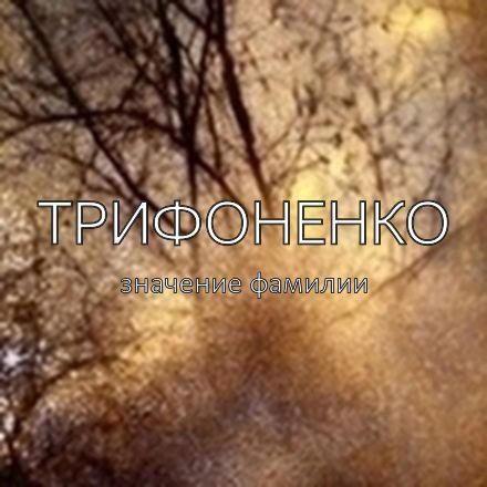 Происхождение фамилии Трифоненко