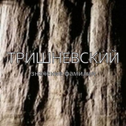 Происхождение фамилии Тришневский