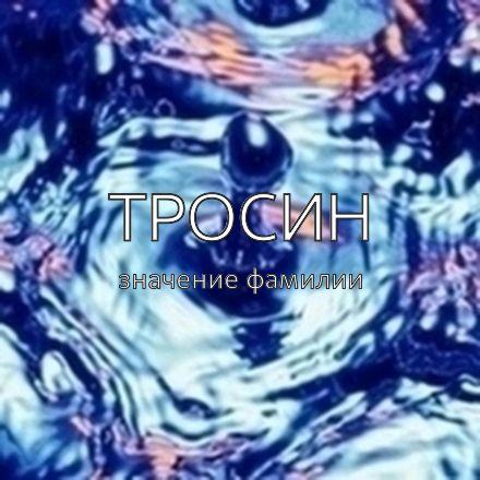 Происхождение фамилии Тросин