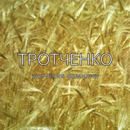 Происхождение фамилии Тротченко