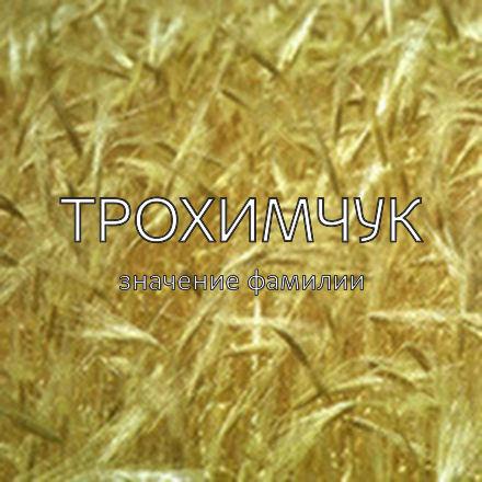 Происхождение фамилии Трохимчук