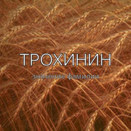 Происхождение фамилии Трохинин