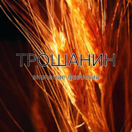 Происхождение фамилии Трошанин