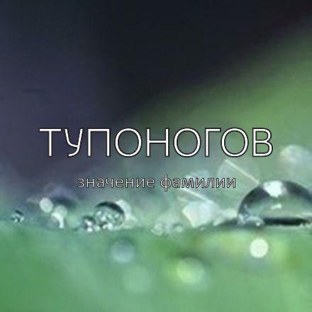 Происхождение фамилии Тупоногов
